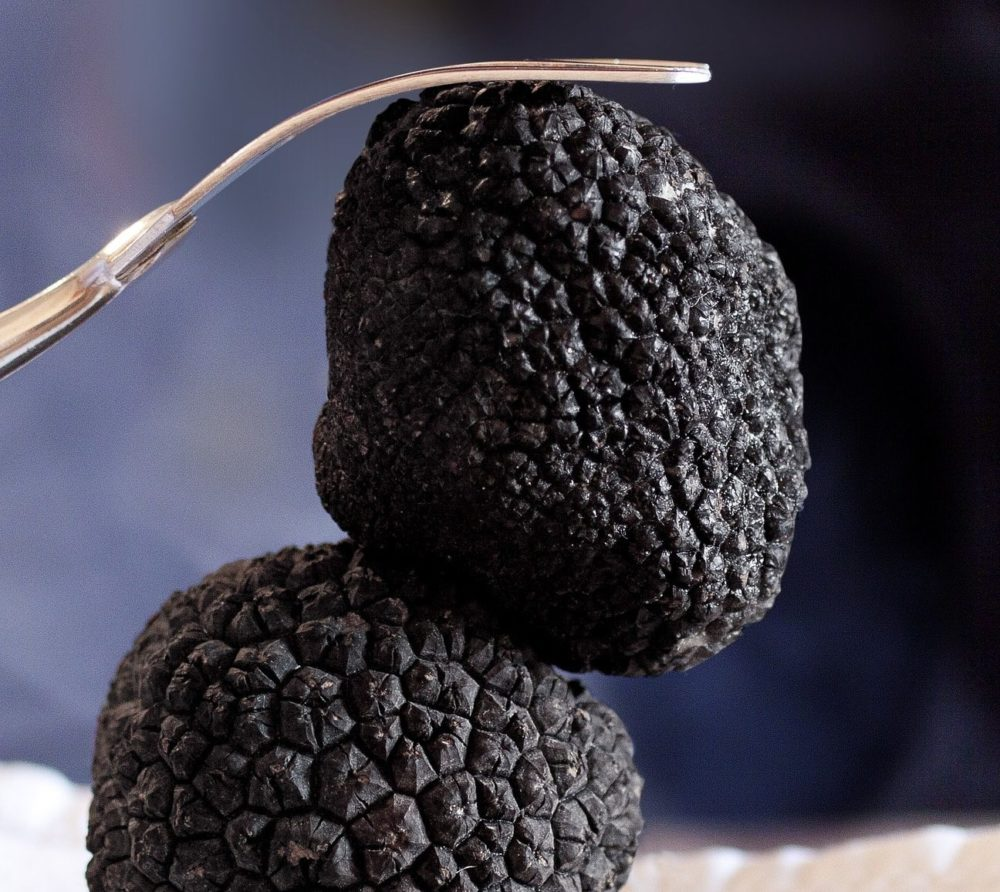 One black truffle on top of another black truffle